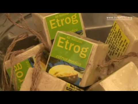 The Etrog Man [video]
