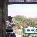 World's birdlife in danger if Israeli sanctuary closes [video]