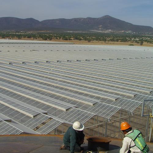 Drip irrigation: Netafim