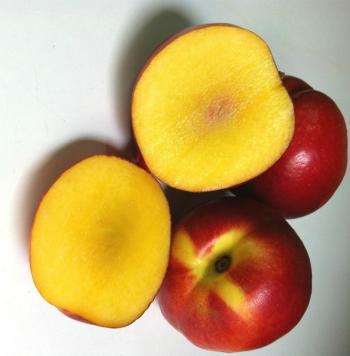 Mango-nectarine