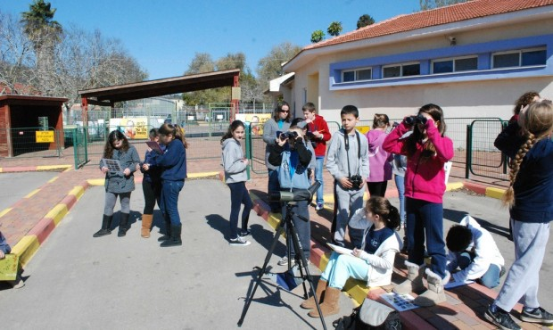 Children in the Alona Regional School have been learning about kestrels for the past 16 years.