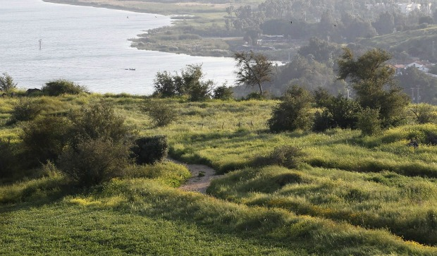 israel-trail-galilee