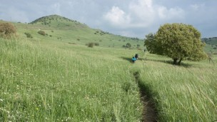 A trail cuts through the Golan Heights in northern Israel. (Asaf Eliason/Shutterstock.com)