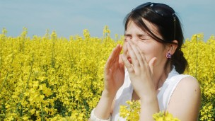 Israeli researchers hope to stop allergic reactions before they start. (Alex Cofaru/Shutterstock.com)