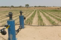 Mashav, Israel's international development agency is already helping to provide African nations with sustainable agriculture.