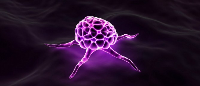 Israeli scientists hope to be able to render cancer cells like this one incapable of reproducing. Image via Shutterstock.com