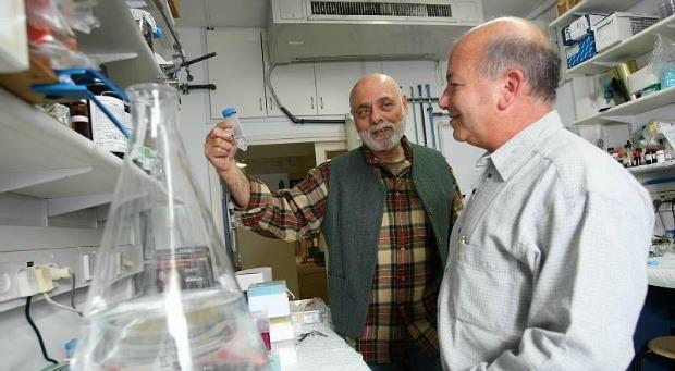 Andromeda CEO Dr. Shlomo Dagan, right, with DiaPep 277 inventor Prof. Irun Cohen.
