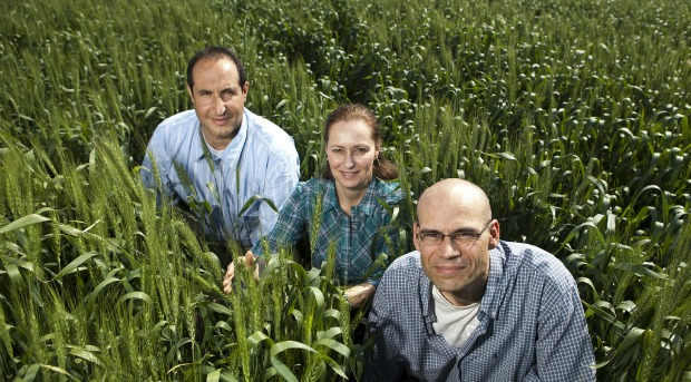 The Morflora team in the field.