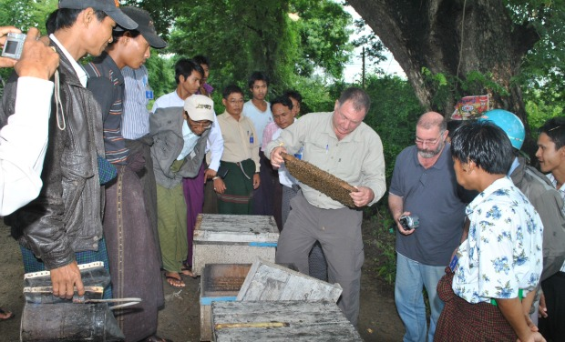 Tag Senior Program Manager Shaike Stern, a beekeeping expert, ran a beekeeping course in Myanmar.
