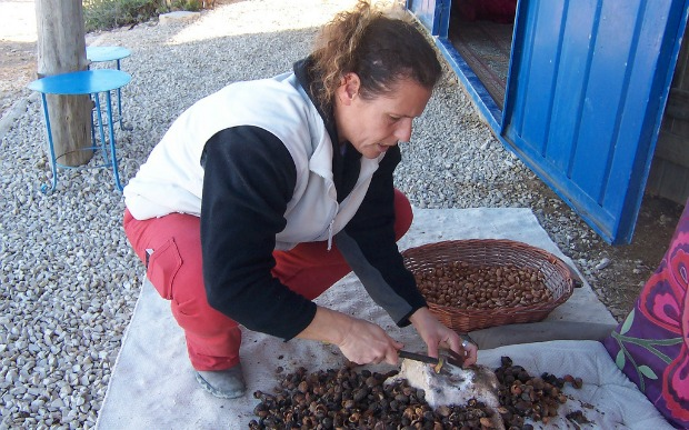 Orly Sharir and her husband hand-press their argan nut oil.