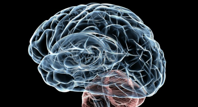 Israelis To Join Human Brain Project Israel21c