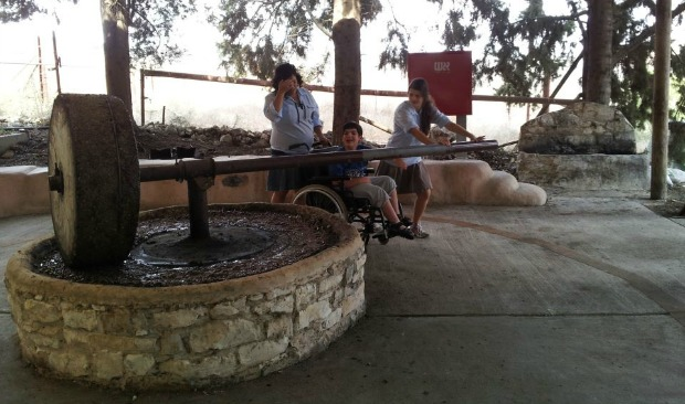 At Emek HaShalom, people with disabilities can press olives and grapes.