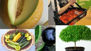 Israeli fruits and veggies