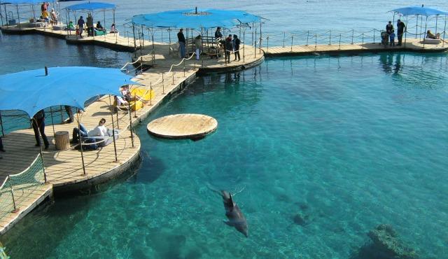 Photo courtesy of Eilat Tourist Bureau