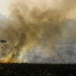 The Carmel blaze in 2010 led to the creation of Matash. Photo courtesy of KKL-JNF