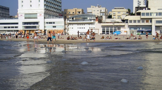 Fighting them on the beaches. For some weeks every year, jellyfish make going in the water in Israel an extreme sport. Image via Shutterstock.com