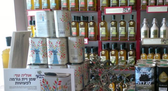 Israeli olive oil comes of age - ISRAEL21c