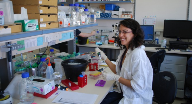 Doctoral student Danielle Karo-Atar studying macrophages at Tel Aviv University.