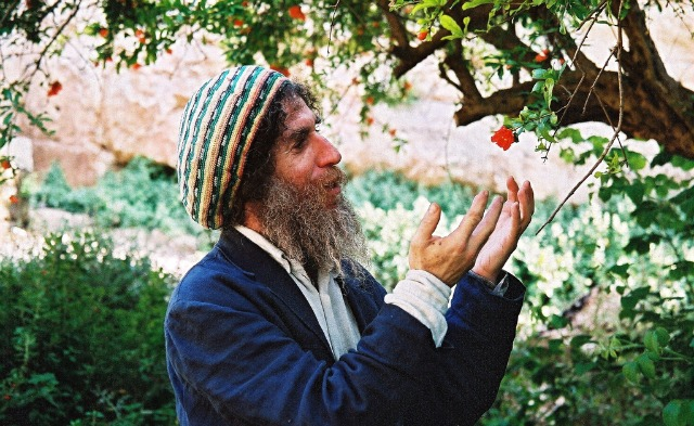 Dr. Ephraim Lansky with a pomegranate flower.