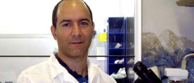 Rotem Karni, Ph.D.