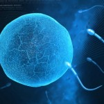 Testosterone therapy improved the sperm count and quality of an Israeli man suffering from infertility. Image via Shutterstock.com