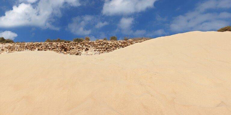 Desert image by Shutterstock