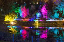 Jerusalem-Botanical-Gardens-night_268x178