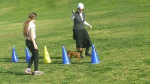 A Dogs for People guide shows a client how to do agility training.