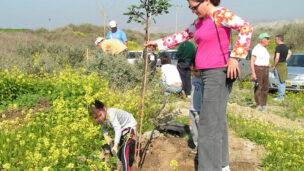 Planting a tree for Tu B'Shvat.