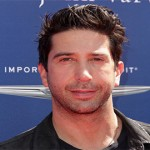 David Schwimmer will play the role of a new father who juggles his family life with his professional aspirations. (Shutterstock)