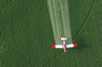 Catalyst Agtech hopes to make pesticides safer. Image via Shutterstock. (www.shutterstock.com)