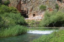 In the background of the Banias Spring is Pan's Cave, where the waterway originated in ancient times. Photo courtesy of Wikimedia Commons