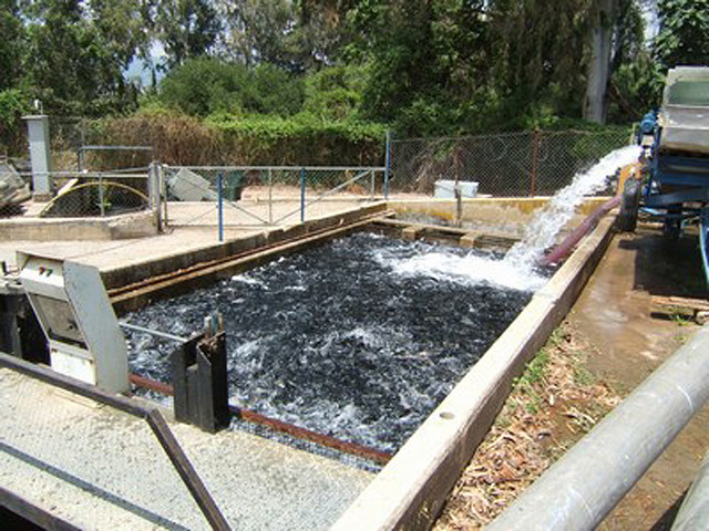 A typical Israeli fish farm.