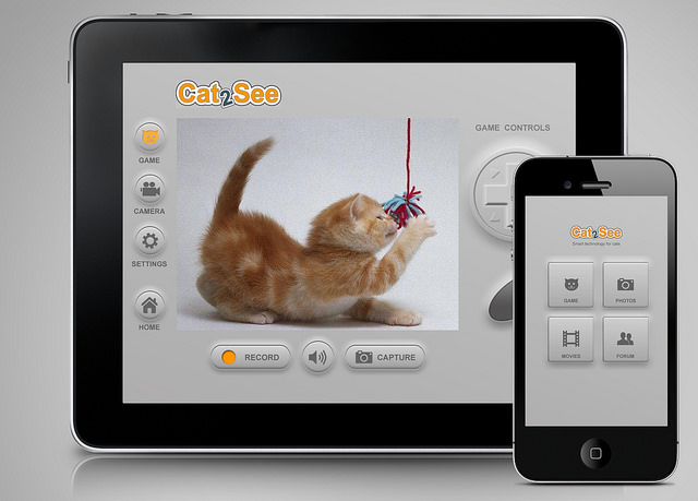 Never miss a kitty moment again.