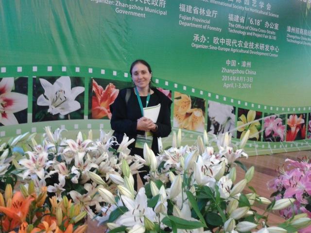 Michele Zaccai amongst her Madonna lilies.