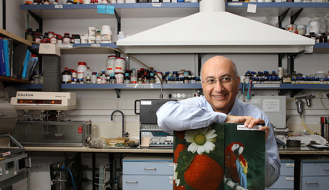 Prof. Magdassi pioneered digitally printed glass. Photo by Nati Shohat, courtesy of the Hebrew University
