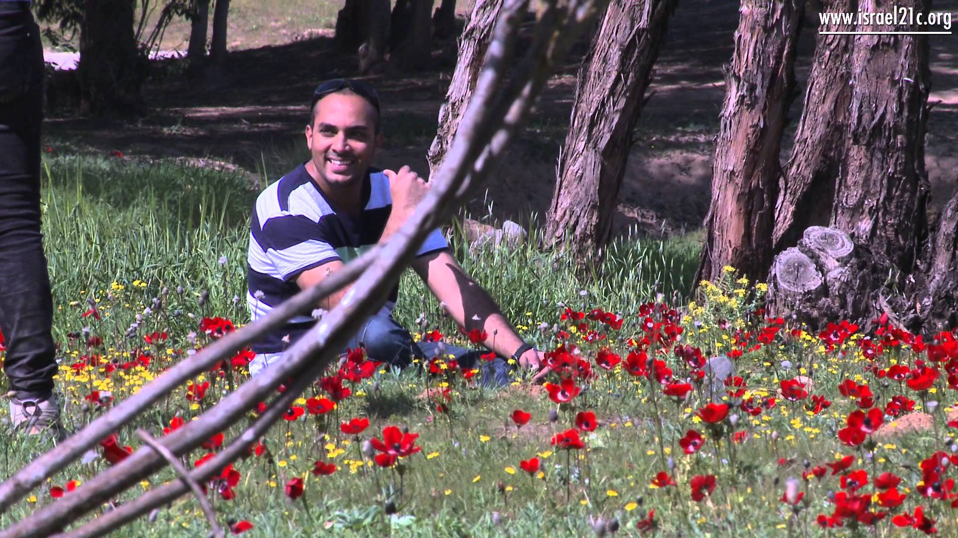 Postcard from Israel: Spring in the Negev