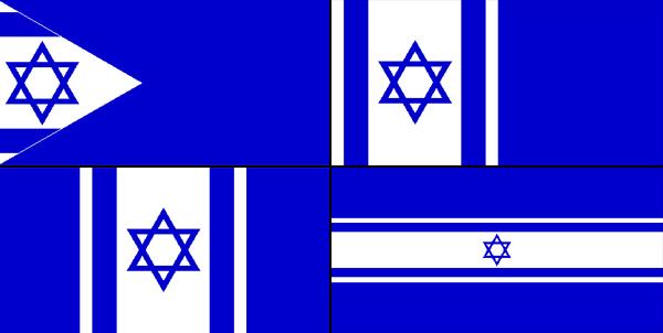 Mordechai-Nimtza-bi+flag-proposalsx4