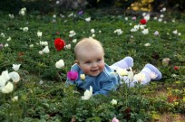 Wildflowers are a great backdrop for baby photos. This was taken in field of anemones in the Jezreel Valley by Yossi Zamir/FLASH90.
