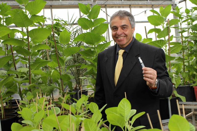 Prof. Oded Shoseyov of CollPlant. Photo by Nati Shohat