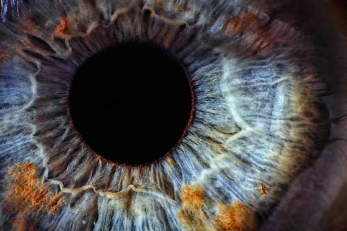 Israeli researchers say eye movements tracked involuntary constitute a sound physiological marker of ADHD. (Photo: Shutterstock)