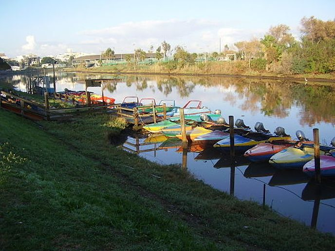 Yarkon pedal boats. Photo courtesy of Pikiwiki Israel