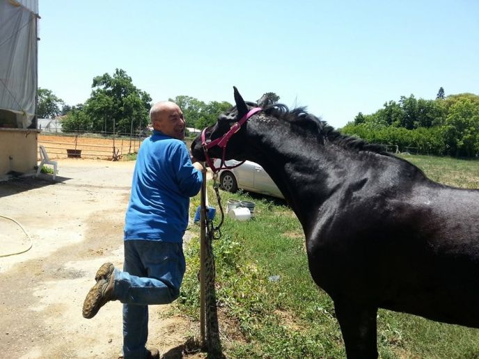 Yossi Shemtov, a soldier with PTSD, often came back after his course of treatment to visit his horse.