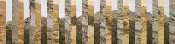 Photage-Persistence-Tami Rishona Ellison