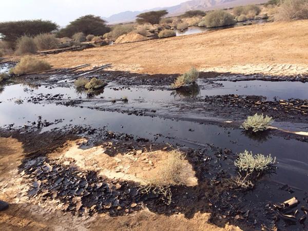 eilat-evrona-oil-spill_5a-roi-talbi