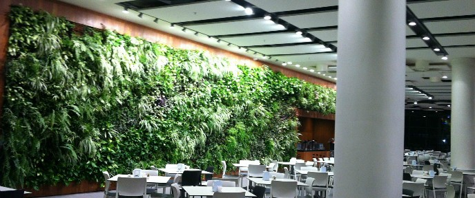 A GreenWall installation in Israel.