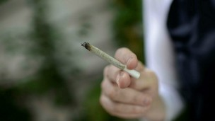 Marijuana has been permitted for medical use in Israel since the 1990s. Photo by Flash90.