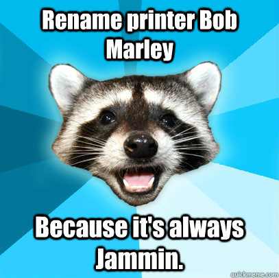 Raccoon. Credit: http://www.quickmeme.com/meme/35t36f