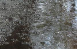 rain-in-israel_268x178