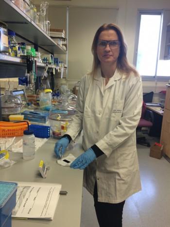 Professor Ester Segal in the lab. (Photo Credit: Technion's Spokesperson's Office.)
